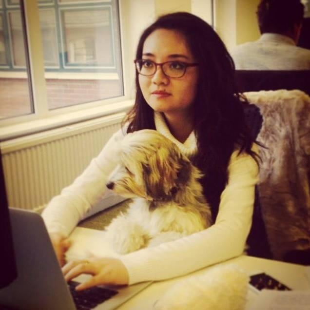 siqing computer dog