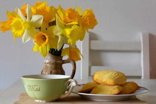 madeleines proust tea